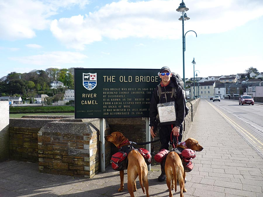 Rhodesian Ridgebacks 1200 mile walk