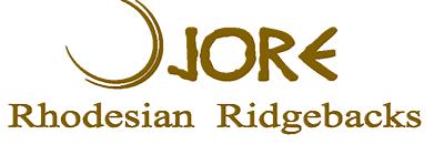 Rhodesian Ridgebacks Puppies